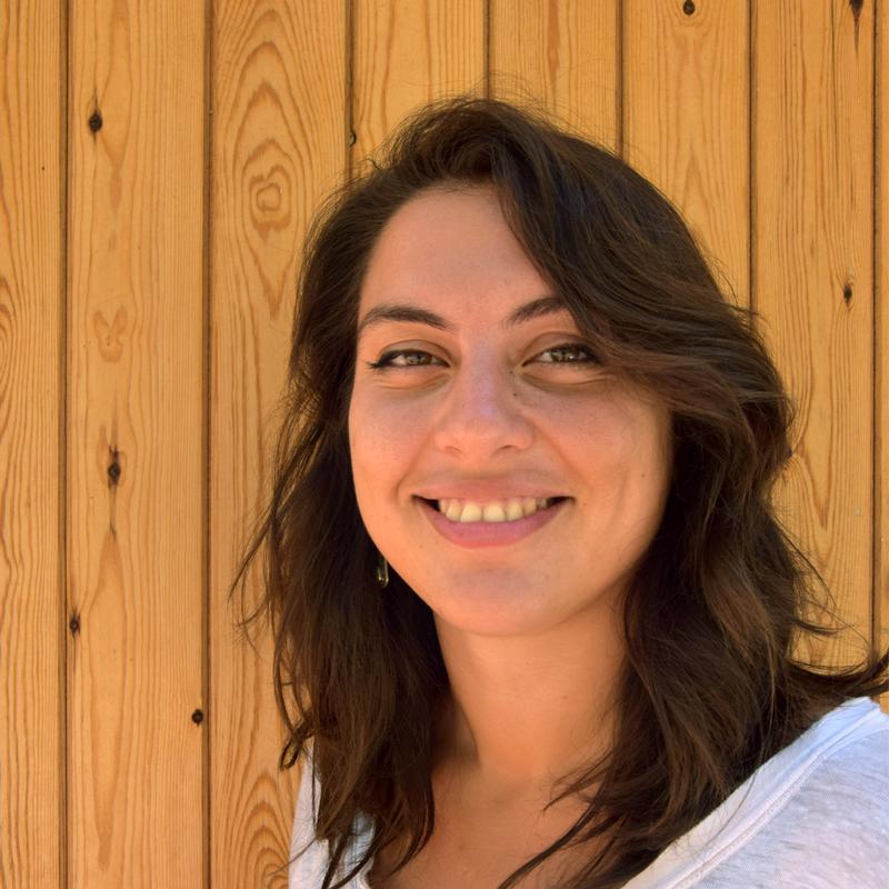 Gaia D'Elia. Técnica de proyectos