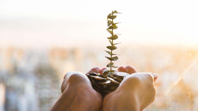 Hacer rentable lo sostenible y sostenible lo rentable